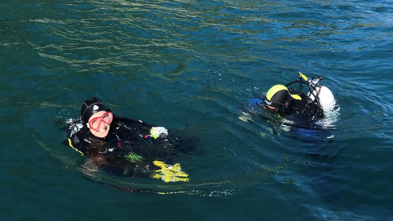 Marine Reserve monitoring